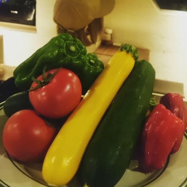 夏のお野菜揃ってきました(^-^)