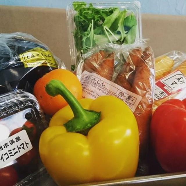 有機野菜が届きました(^-^)