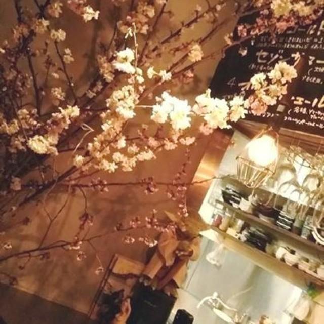4月5日(水)本日開栓の樽生!!