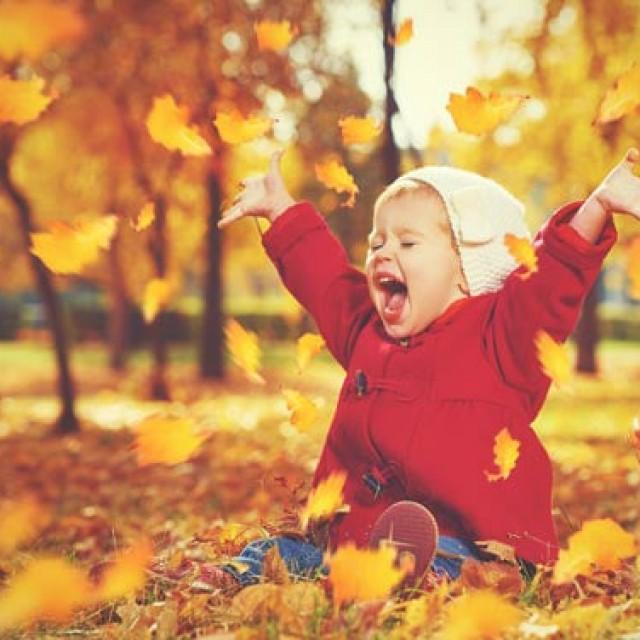 秋晴れですな!