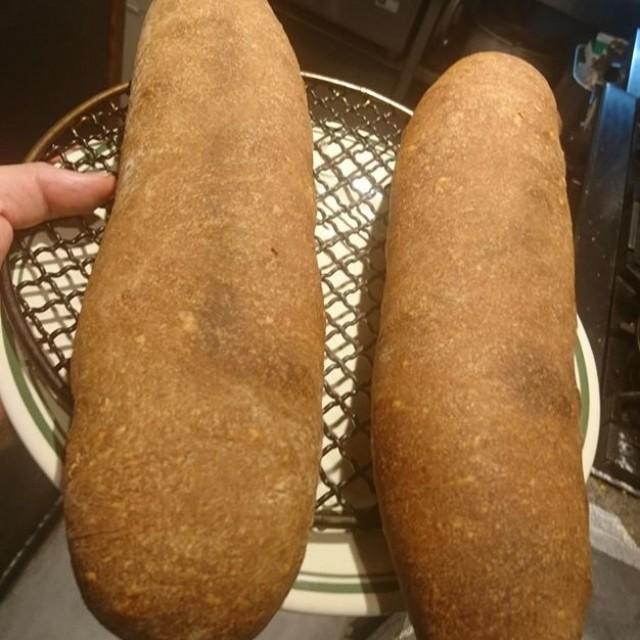 本日のパンはこちら!