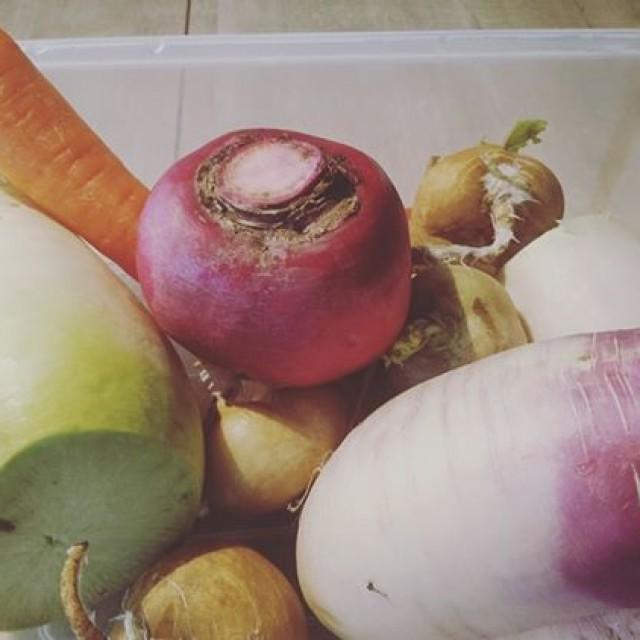 今日はこちらの野菜でピクルスを♪
