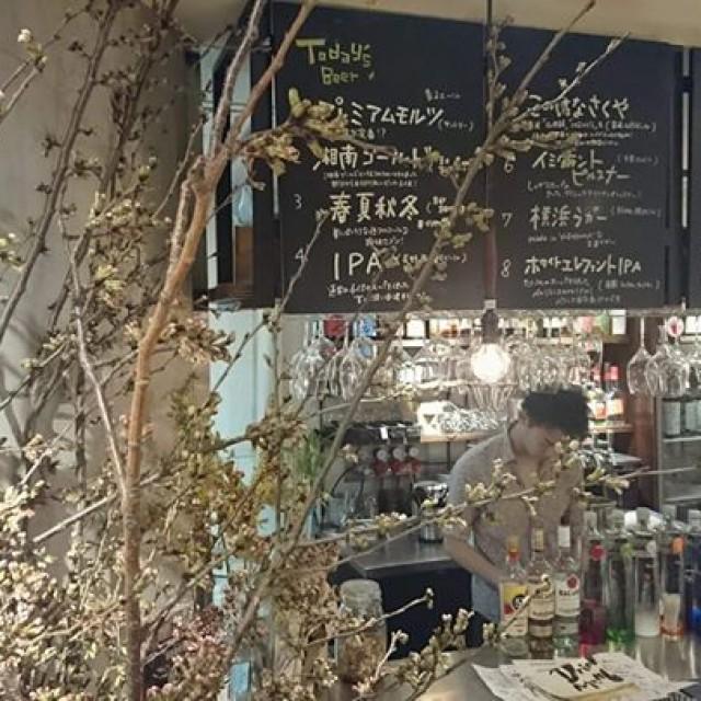 3月26日(月) 本日開栓の樽生は京都から!!